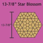 STARB13078
