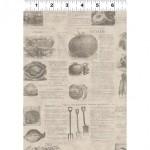 vintage_seedpackets_y1663-61