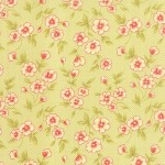 20255-17 Gingham Blooms Light Green