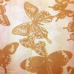 AJS15019290-ash-butterflies_web