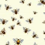 bees6781Q30 (2)