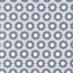 RKaufman_EHartman_Pacific_silver_AZH-15876-186