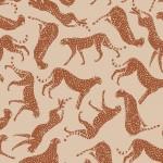 cheetah2022P50 web