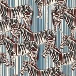 zebra2021B95 (2)