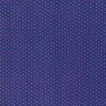 pwtp091-blu-tortoise-shell-blue-raspberry