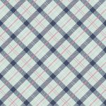 C5684-NAVY_Enchanted_Plaid_72dpi